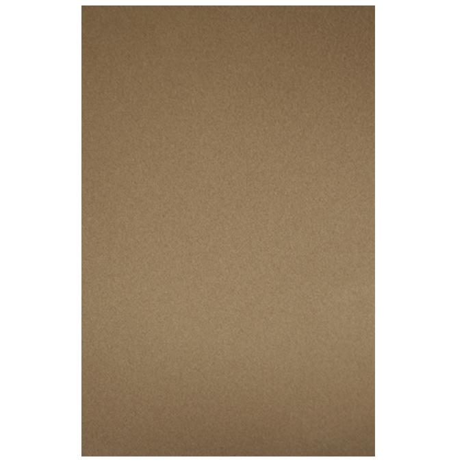 Papier pastel Sennelier Pastel Card 50 x 65cm 004 - Terre d'ombre