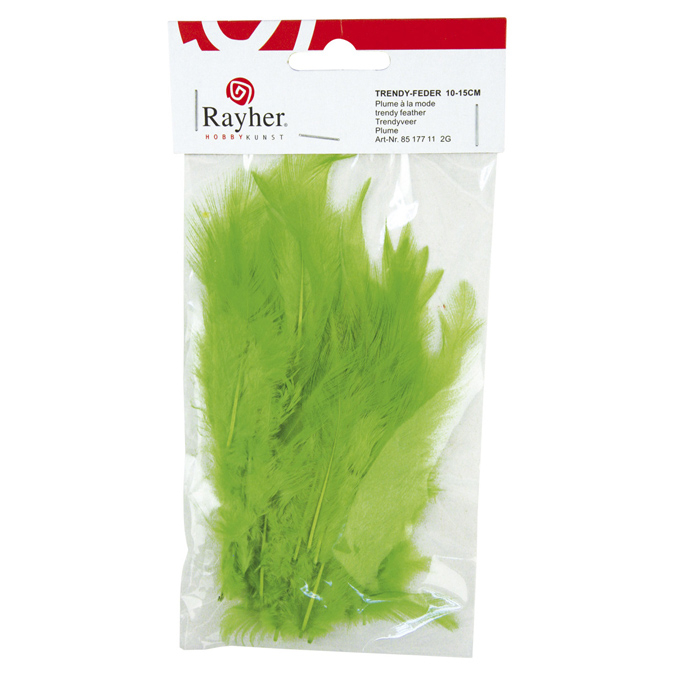 Plume duvetée 10-15cm vert clair