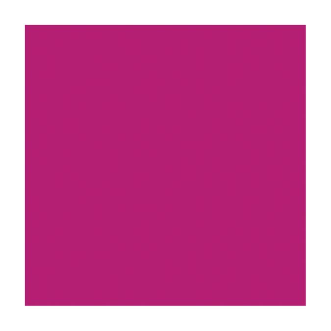 Papier Bazzill 30,5x30,5cm 217g texture lisse et douce. Berry Sensation