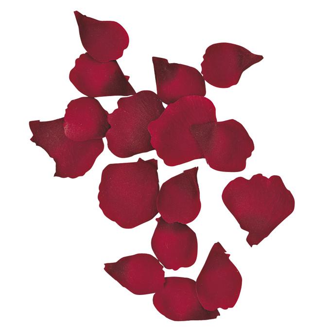 Pétales de rose rouge 3 à 5 cm