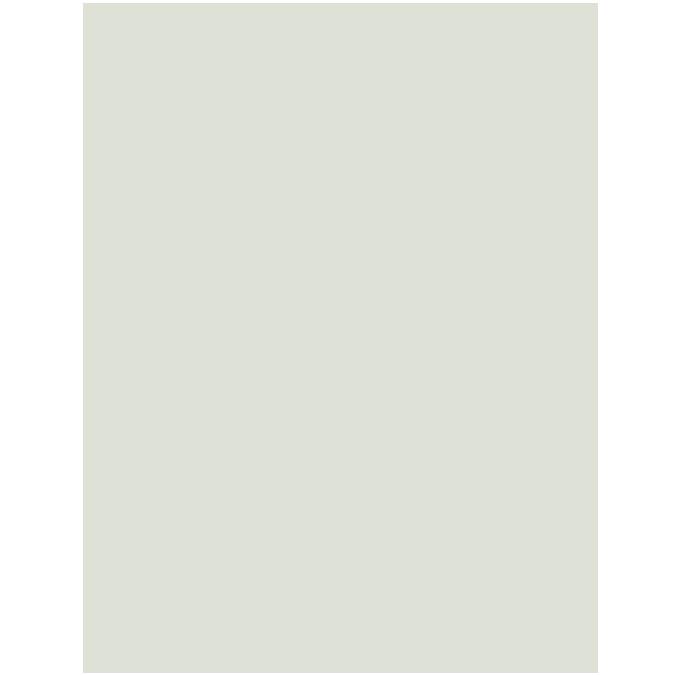 Carton gris 50 X 65 cm 600 g/m² ep. 1 mm