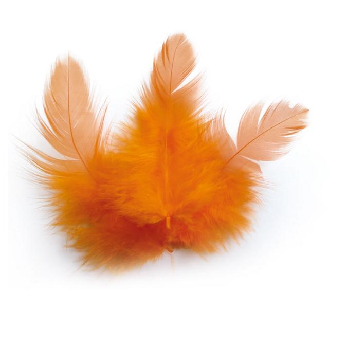 Plume orange +/- 10 cm - 3 g