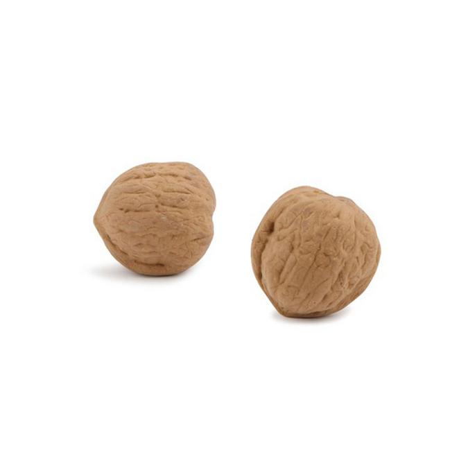 Gomme forme de noix
