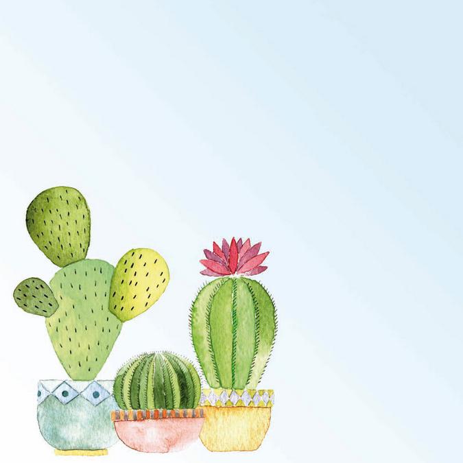Papier Cactus 30 x 30 cm