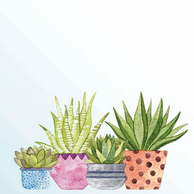Papier Plantes grasses 30 x 30 cm