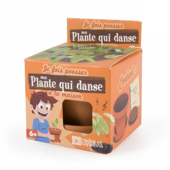 Kit de jardinage Je fais pousser ma plante qui danse