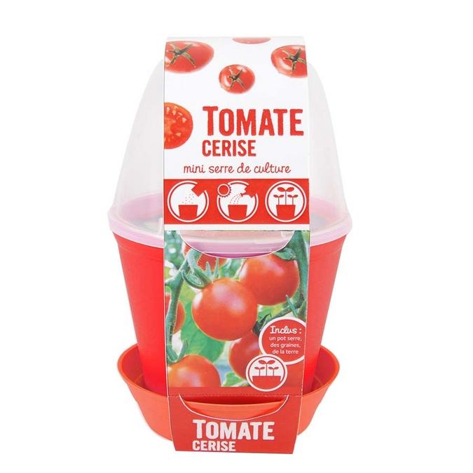 Mini serre de culture Tomate cerise