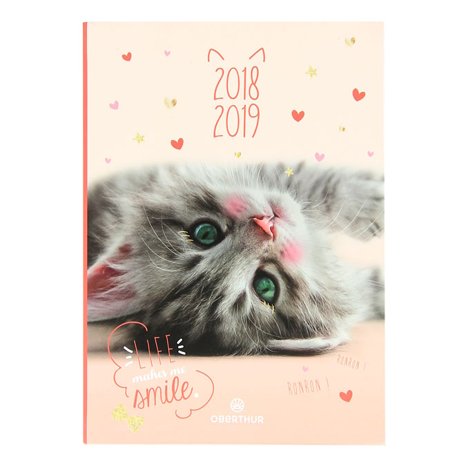 Agenda scolaire 2018-19 journalier 12 x 17 cm Chaton