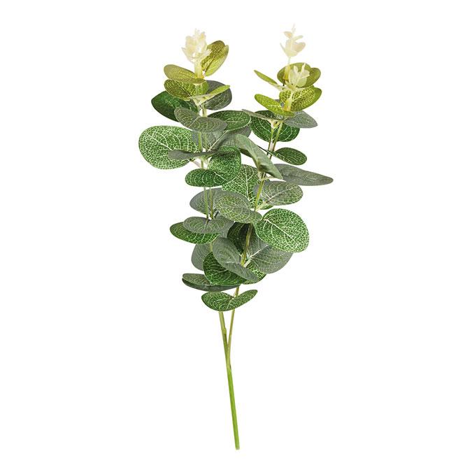 Fausse plante Branche d'eucalyptus