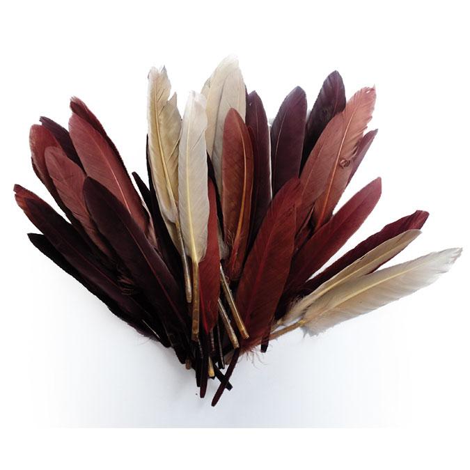 Plumes d'indien camaïeu chocolat 15 cm 10 g