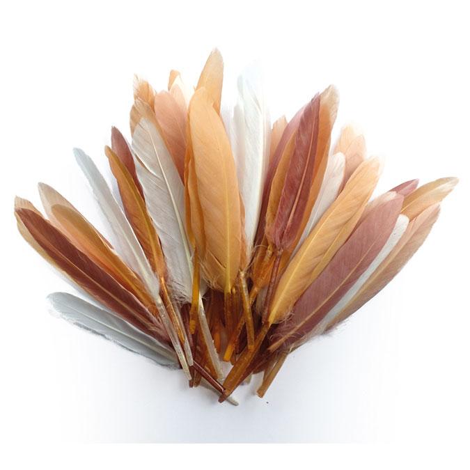Plumes d'indien camaïeu beige 15 cm 10 g