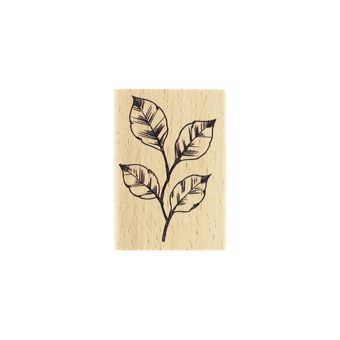 Tampon bois Feuillage esquissé 5 x 7 cm