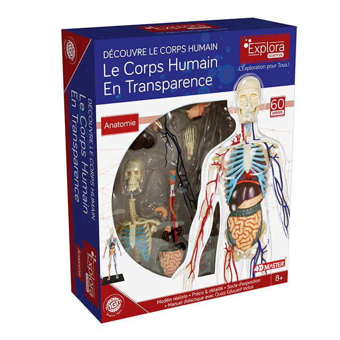 Coffret anatomie Le corps humain