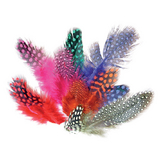 Plumes colorées assorties 25 g