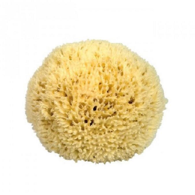 Éponge de mer ultra fine pour le visage 10 cm