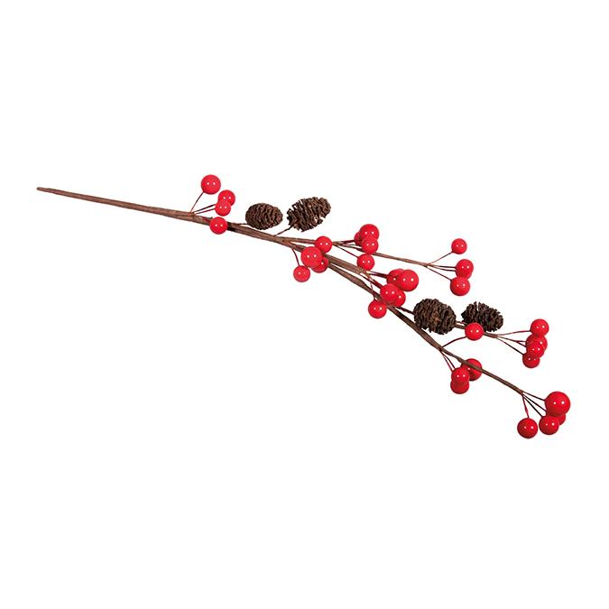 Branche de baies avec cônes d'aulne