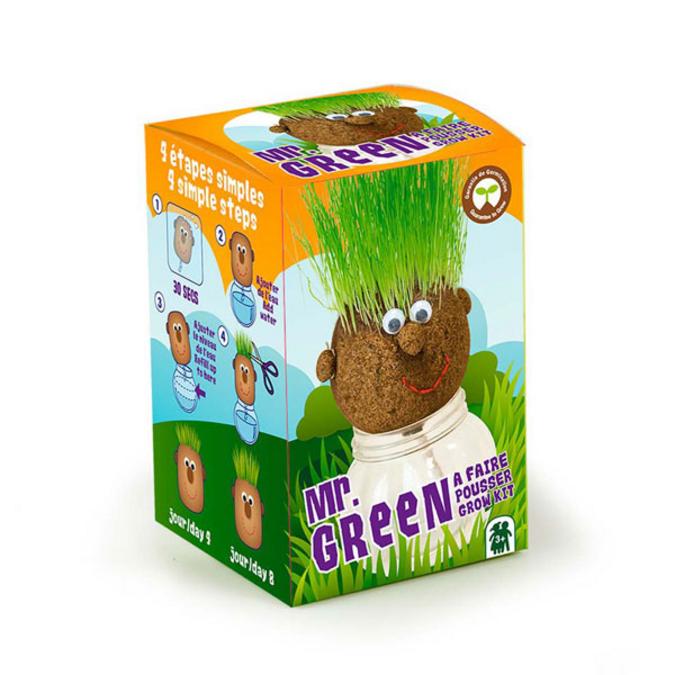 Tête à pousser avec graines de gazon Mr Green