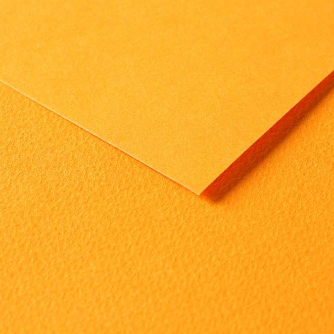 Papier Tulipe 160 g/m² 50 x 65 cm Coquelicot